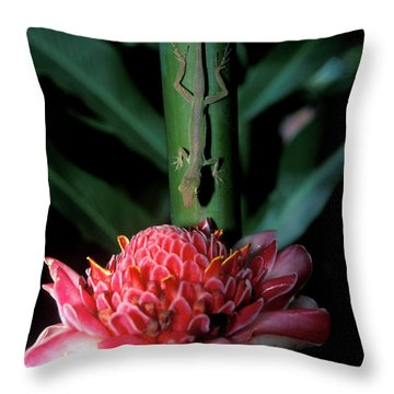 Lizard On Stalk Above Wax Lily Throw Pillow