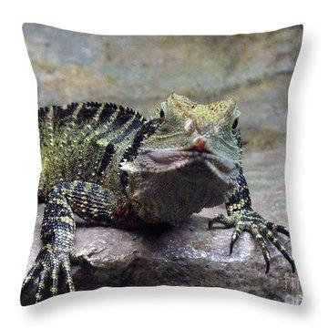Throw Pillow featuring the photograph Lizzie's Gaze by Lingfai Leung