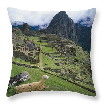 Llama At Machu Picchus Ancient Ruins Throw Pillow by Chris Caldicott