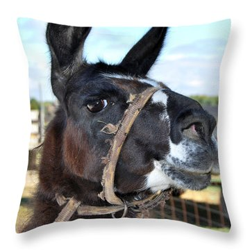 Llama Mama Throw Pillow
