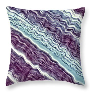 Lm Of A Tendon Throw Pillow