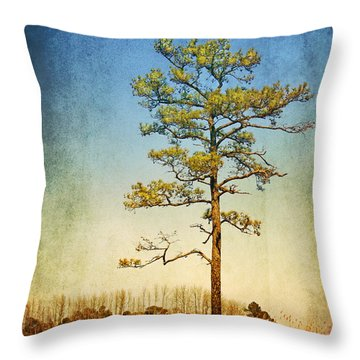 Loblolly Pine Along The Chesapeake Throw Pillow