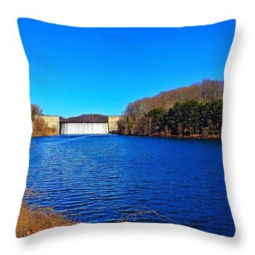 Loch Raven Reservoir Throw Pillow