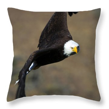 Locked In Throw Pillow by Mike  Dawson