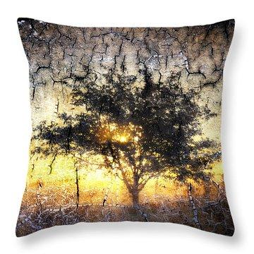 Lodi Morning Throw Pillow