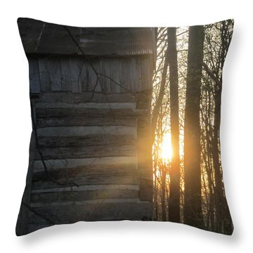 Log House Up Close And Sunset Throw Pillow
