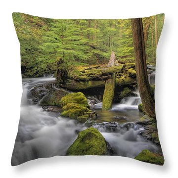 Log Jam Throw Pillow by David Gn