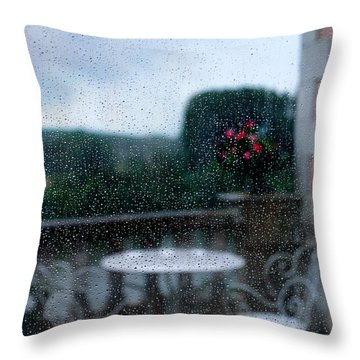 Loire Valley View Throw Pillow