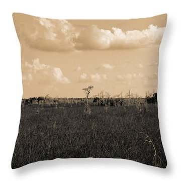 Throw Pillow featuring the photograph Lone Cypress by Gary Dean Mercer Clark