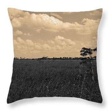 Throw Pillow featuring the photograph Lone Cypress II by Gary Dean Mercer Clark