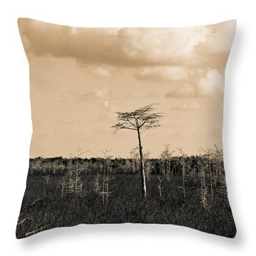 Throw Pillow featuring the photograph lone cypress III by Gary Dean Mercer Clark