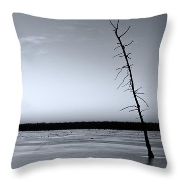 Throw Pillow featuring the photograph Lone Cypress by Jane Eleanor Nicholas