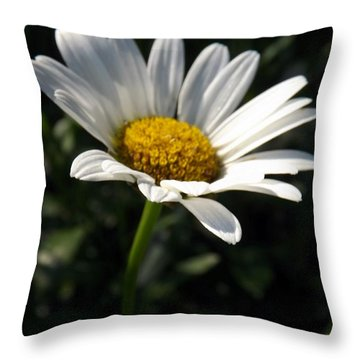 Lone Daisy Throw Pillow