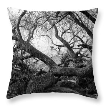 Throw Pillow featuring the photograph Lone Duck by Colleen Williams