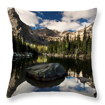 Lone Eagle  Throw Pillow by Steven Reed