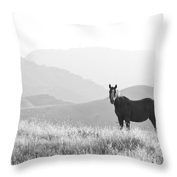 Lone Horse Throw Pillow by B Christopher