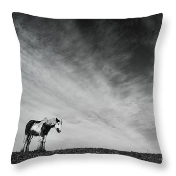 Lone Horse Throw Pillow by Julian Eales