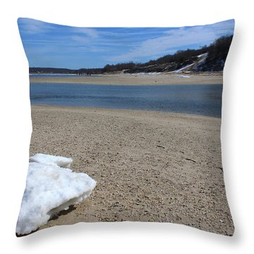 Lone Iceberg Kings Park New York Throw Pillow by Bob Savage
