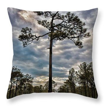 Lone Pine Throw Pillow