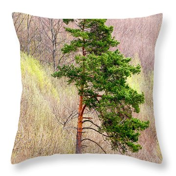 Throw Pillow featuring the photograph Lone Pine by Les Palenik