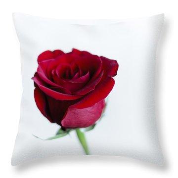 Lone Rose Throw Pillow by Christi Kraft