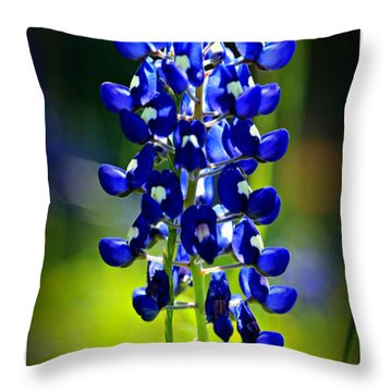 Lone Star Beauty Throw Pillow