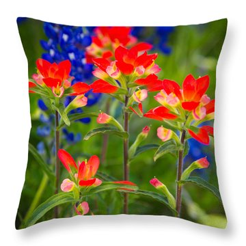 Lone Star Blooms Throw Pillow by Inge Johnsson