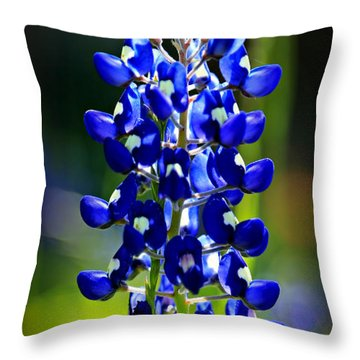 Lone Star Bluebonnet Throw Pillow by Stephen Stookey