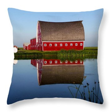 Throw Pillow featuring the photograph Lone Star Farms by Larry Trupp
