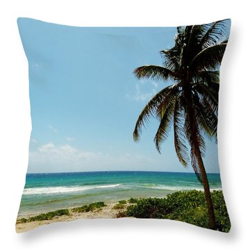 Throw Pillow featuring the photograph Lone Tree by Amar Sheow