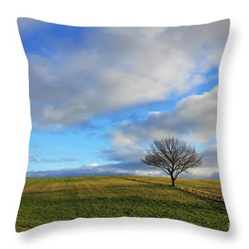 Lone Tree At Epsom Downs Uk Throw Pillow
