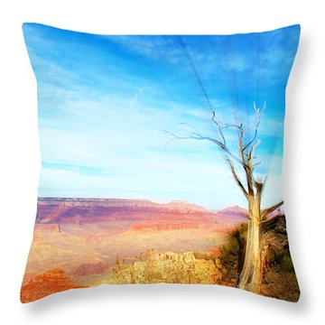 Lone Tree Canyon Throw Pillow