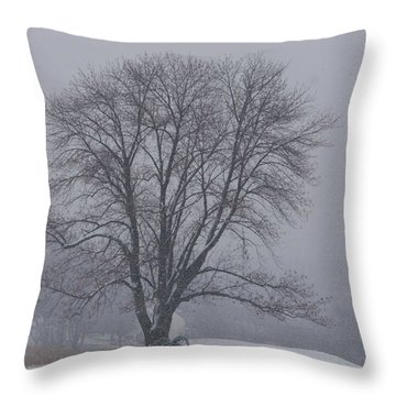 Winter In Valley Forge Throw Pillow