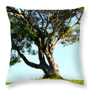 The Lone Tree Original Throw Pillow