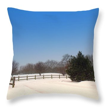 Lone Winter Evergreen  Throw Pillow
