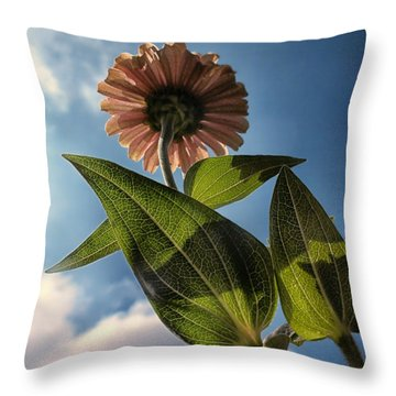 Lone Zinnia 01 Throw Pillow by Thomas Woolworth