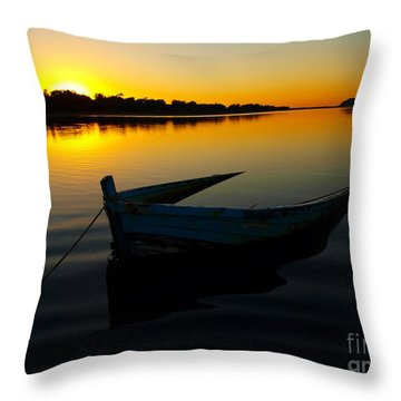 Throw Pillow featuring the photograph Lonely At Sunrise by Trena Mara