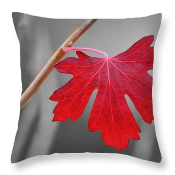 Lonely Autumn Leaf Throw Pillow