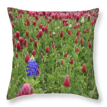 Throw Pillow featuring the photograph Lonely Bluebonnet by Jerry Bunger