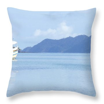 Throw Pillow featuring the photograph Lonely Boat by Andrea Anderegg