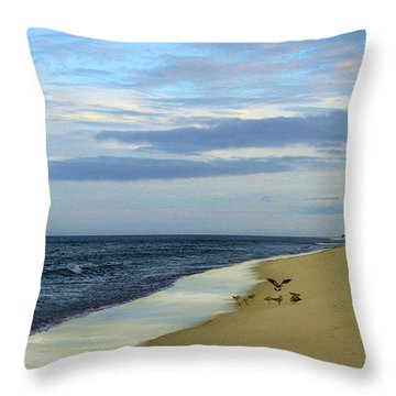 Lonely Cape Cod Beach Throw Pillow