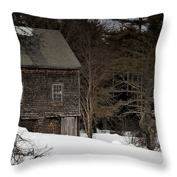 Lonely In The Winter Throw Pillow by Richard Bean