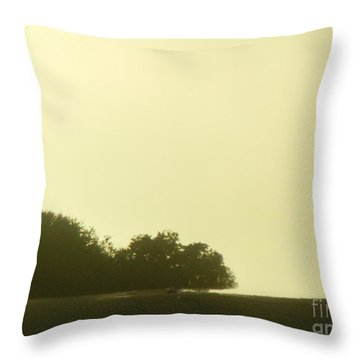 Throw Pillow featuring the photograph Lonely Landscape by Mini Arora