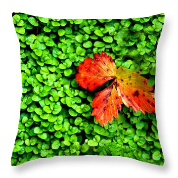 Throw Pillow featuring the photograph Lonely Leaf by Charlie and Norma Brock