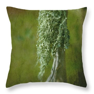 Lonely Lichen Throw Pillow by Judi Bagwell