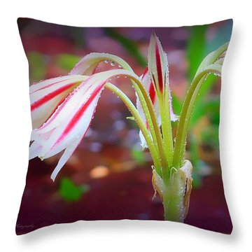 Lonely Lilly Throw Pillow by Debra Forand