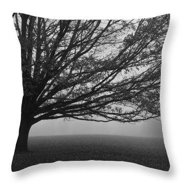 Throw Pillow featuring the photograph Lonely Low Tree by Maj Seda