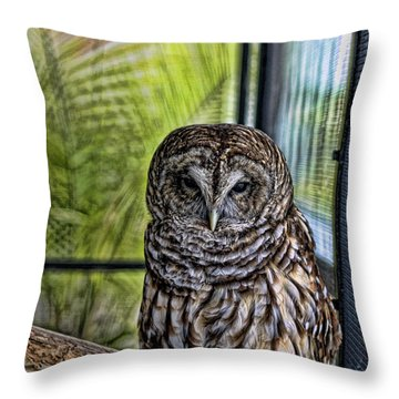 Lonely Owl Throw Pillow