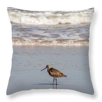 Lonely Seabird  Throw Pillow