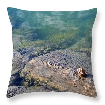 Throw Pillow featuring the photograph Lonely Shell by Patricia Greer